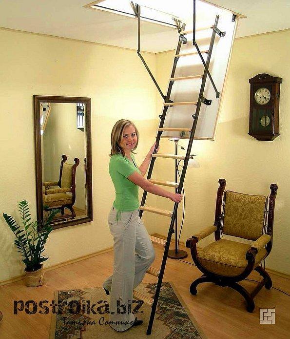 Лестница на мансарду: красивые интерьерные фото и максимальный комфорт