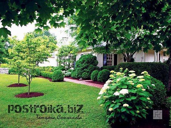 Садовая зона отдыха