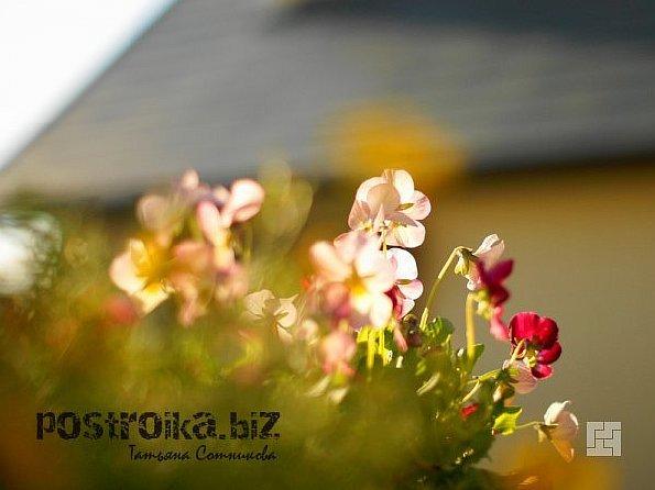 Оформление цветочной зоны
