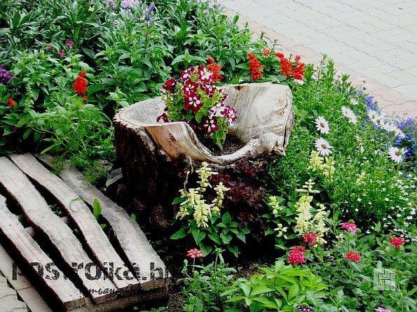 Использование пней и коряг для украшения ландшафта