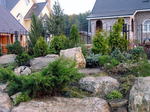 Альпинарий альпийская горка и рокарий в саду фото видов