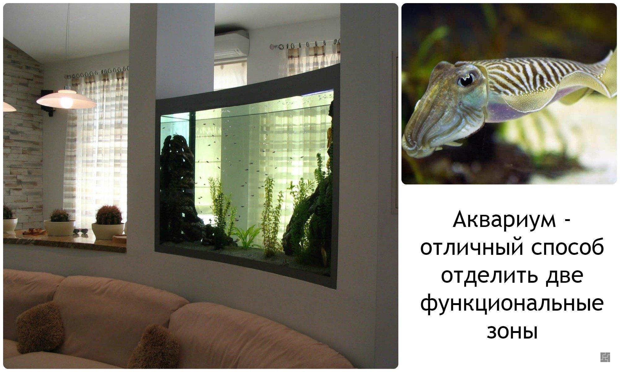 Аквариум в интерьере квартиры, гостиной, фото.