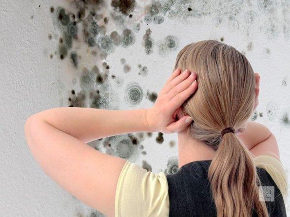 Человек смотрит на грибок в квартире