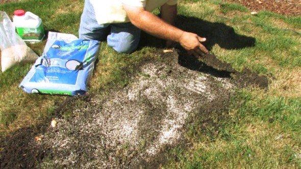 Восстановление повреждённого газона