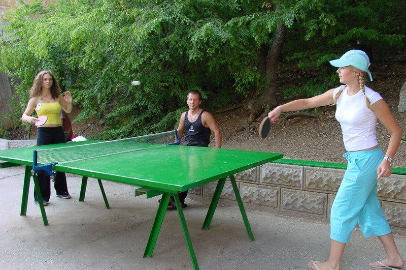 Настольный теннис сделать своими руками