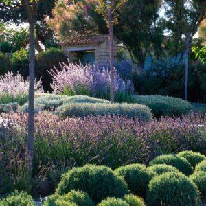 Оформление сада в ландшафтном дизайне