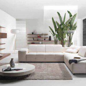 Обязательный элемент декора — комнатные растения