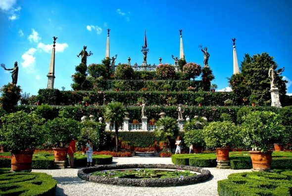 Необычный сад