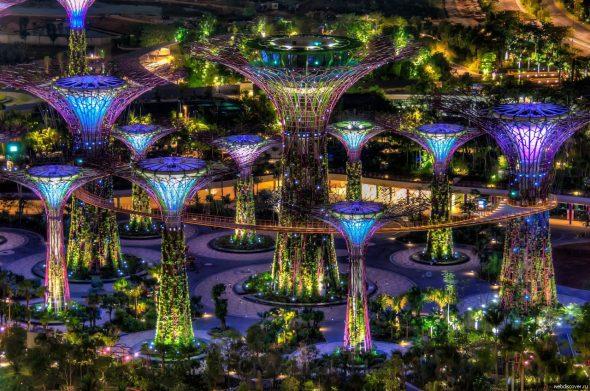 Светящийся парк