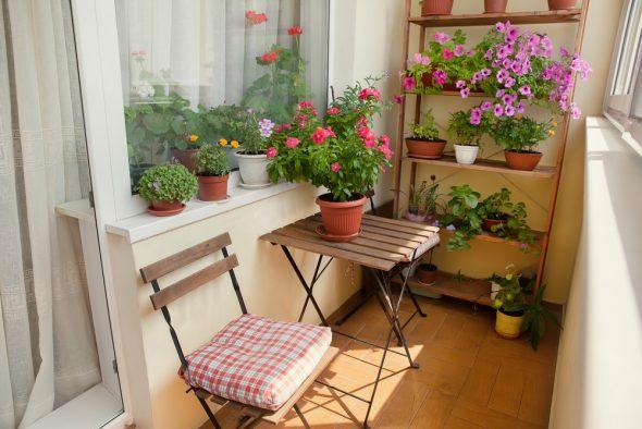 Место отдыха и цветы на балконе