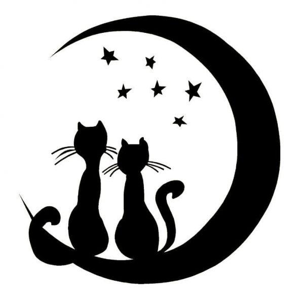 Две кошки сидят на месяце