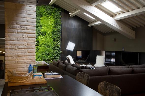 Вертикальный сад в мансардной квартире