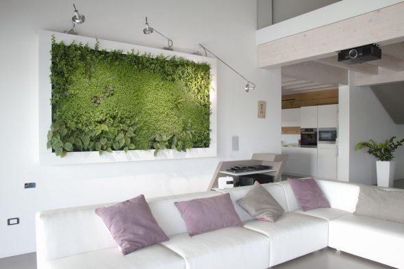 Вертикальный сад в виде картины