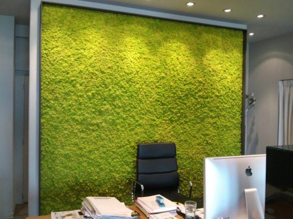 Вертикальный сад в кабинете