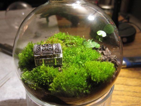 Флорариум из мха с сундуком