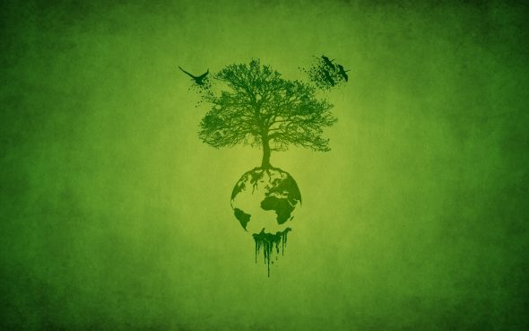 Дерево на Земле