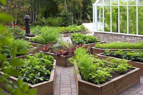как красиво оформить огород