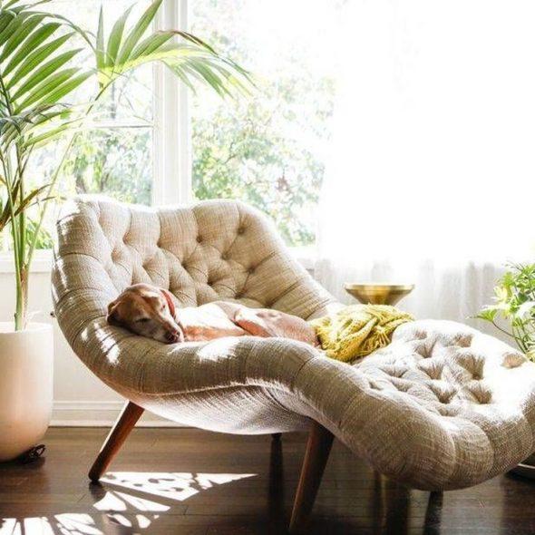 Кресло для чтения у окна