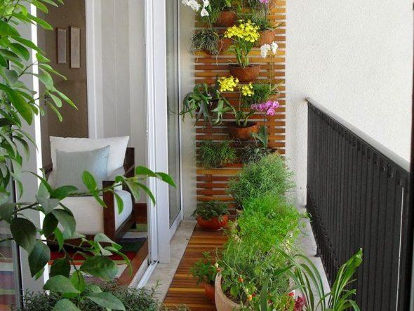 Использование балкона в качестве зимнего сада
