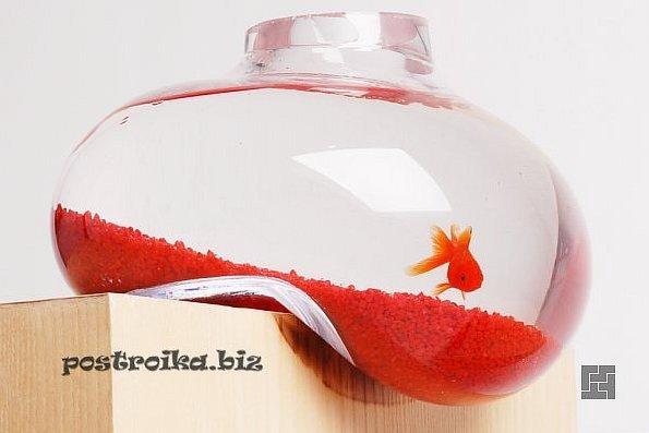 Современный аквариум в интерьере: фото и описание