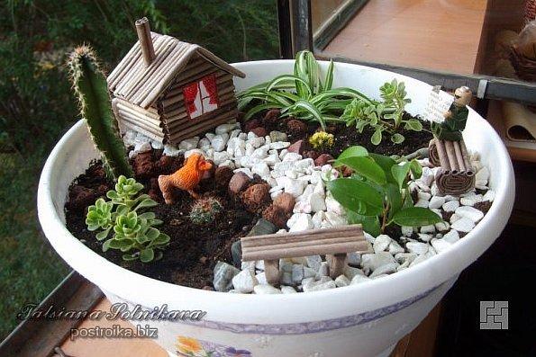 Мини-сад в керамическом горшке