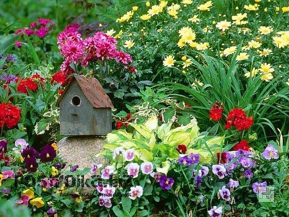 Стилевое решение цветников