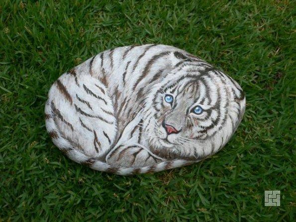 нарисованный на камне кот