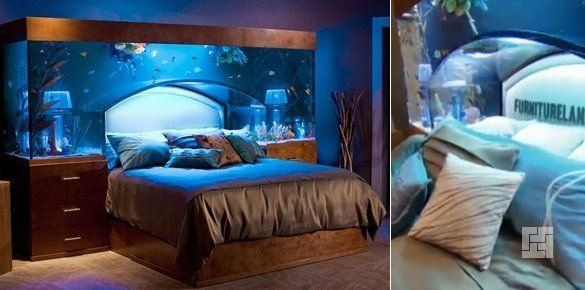 Аквариум-арка над кроватью