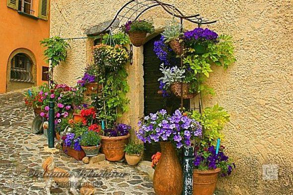 Вход в дом в стиле прованс