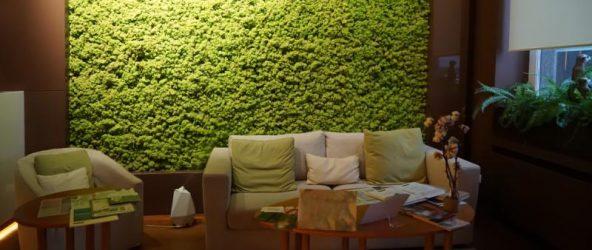 Идея использования стабилизированного мха в интерьере гостиной