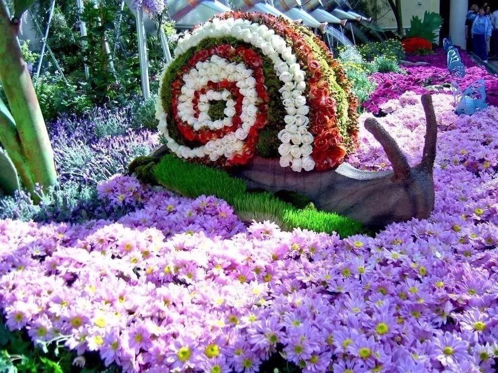 День, клумбы с цветами картинки