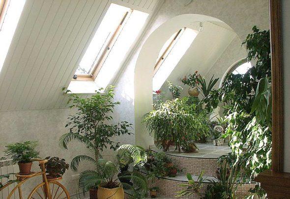 Зимний сад в мансарде