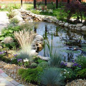 Дачный пруд с камнями и растениями