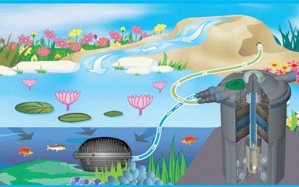 Технология устройства фонтанчика на дачном пруду