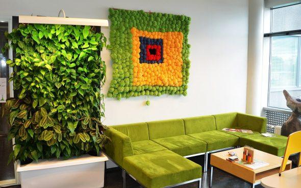 Стенд с растениями в помещении