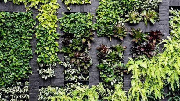 Стена, украшенная растениями