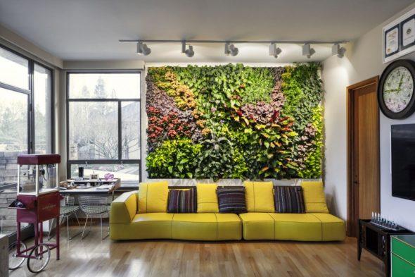 «Ковёр» из растений на стене