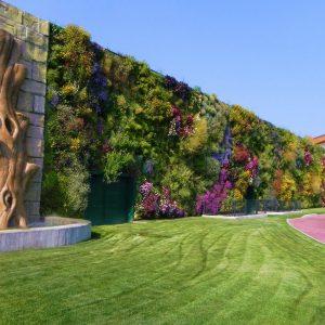 Стена с разноцветными растениями