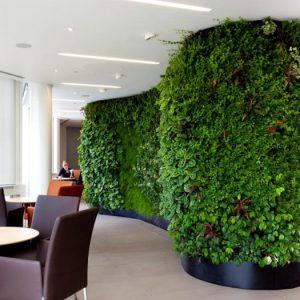 Волнообразная зеленая стена