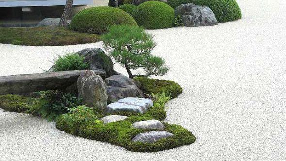 Мох в саду камней