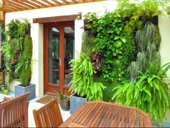 Вертикальное озеленение на фасаде