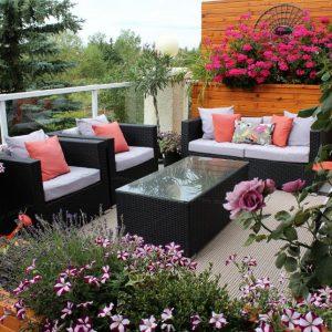Украшение террасы комнатными цветами и кустарниками