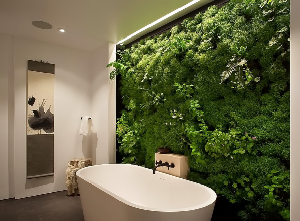 Вертикальный сад в ванной