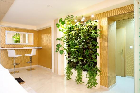 Вертикальный сад с крупными растениями