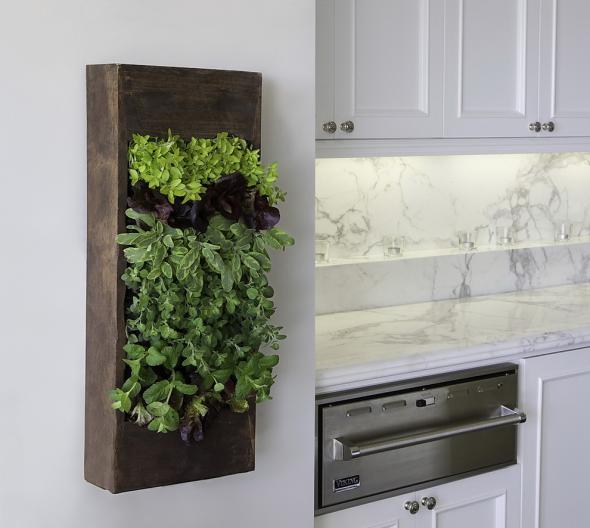 Вертикальный сад с травами и зеленью на кухне
