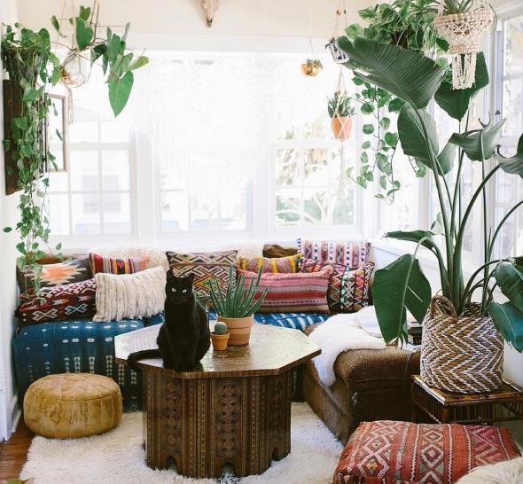 Нейтральный ковёр, яркие подушки и растения в интерьере