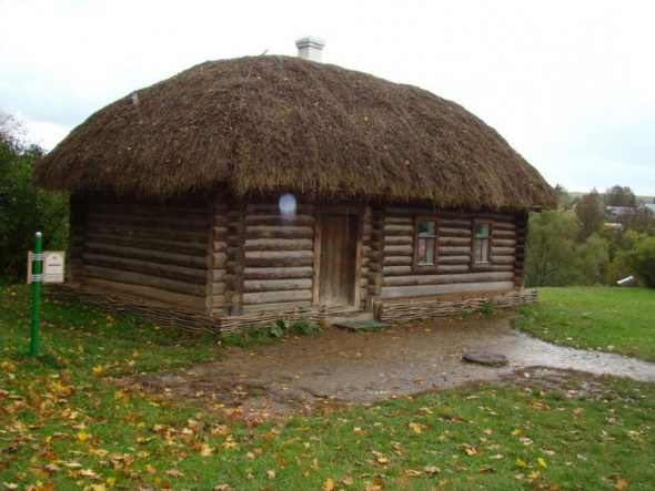Крыша из соломы на бревенчатом срубе