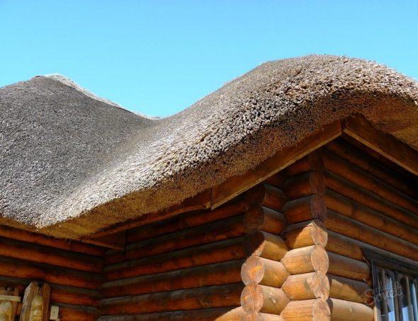 Как должна выглядеть крыша из камыша