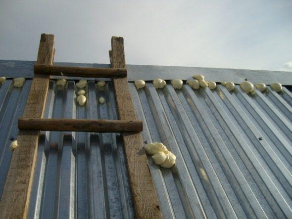 Заполнение щелей на крыше пеной