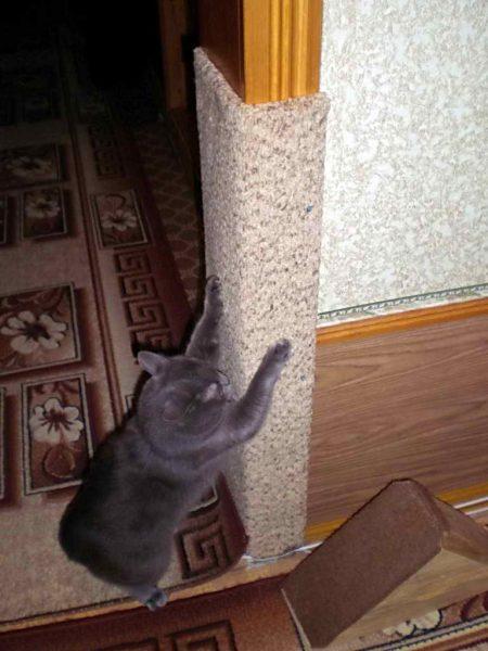 Когтеточка для кошки из старого ковролина
